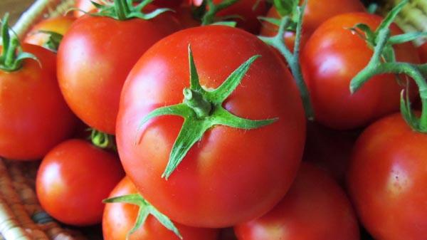 Улаан лооль хорт хавдраас сэргийлдэг