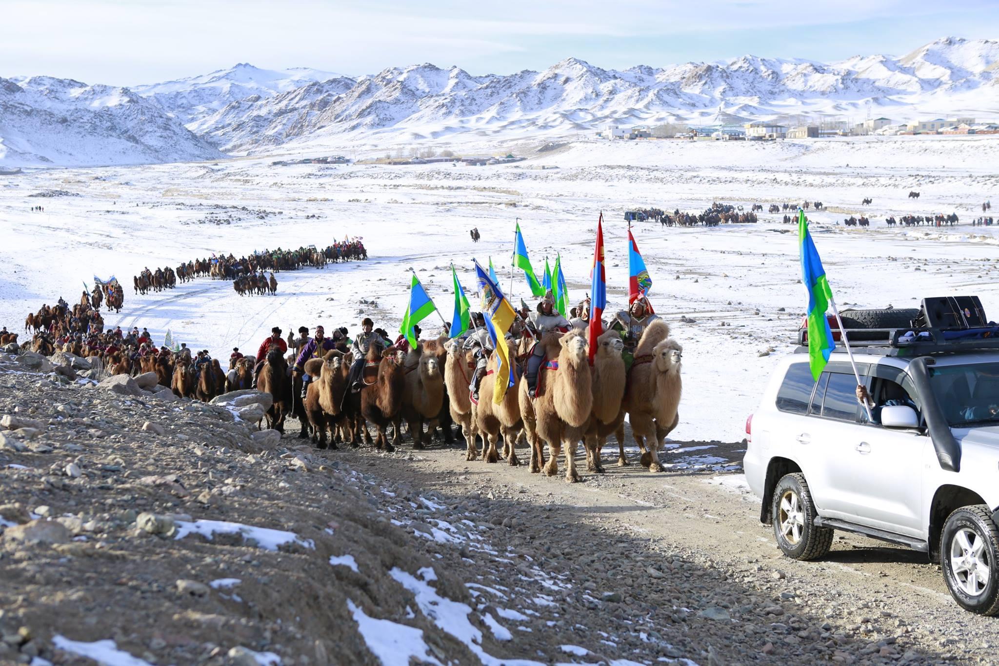 """""""Их говийн тэмээний баяр 2014 амжилттай зохион байгуулагдла"""