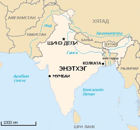 Энэтхэгт А хэлбэрийн H1N1 томуугийн халдвараар 600 орчим хүн нас баржээ