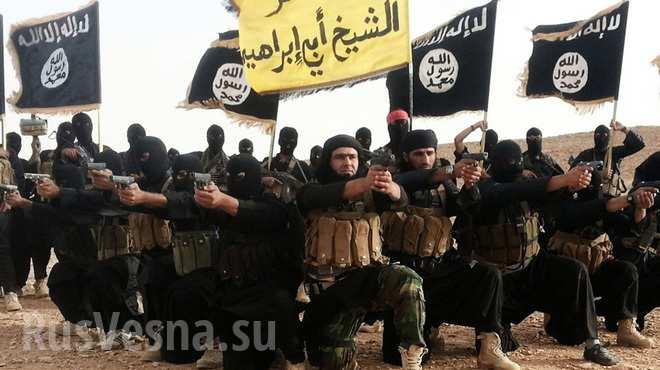 """""""Исламын улс"""", """"Аль-Каида"""