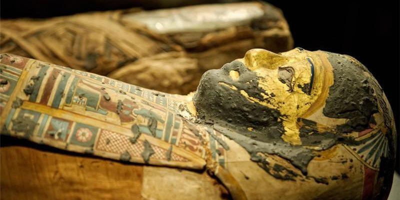 Египетид 3.5 мянган жилийн өмнөх зургаан мумми олж, судалж эхэлжээ