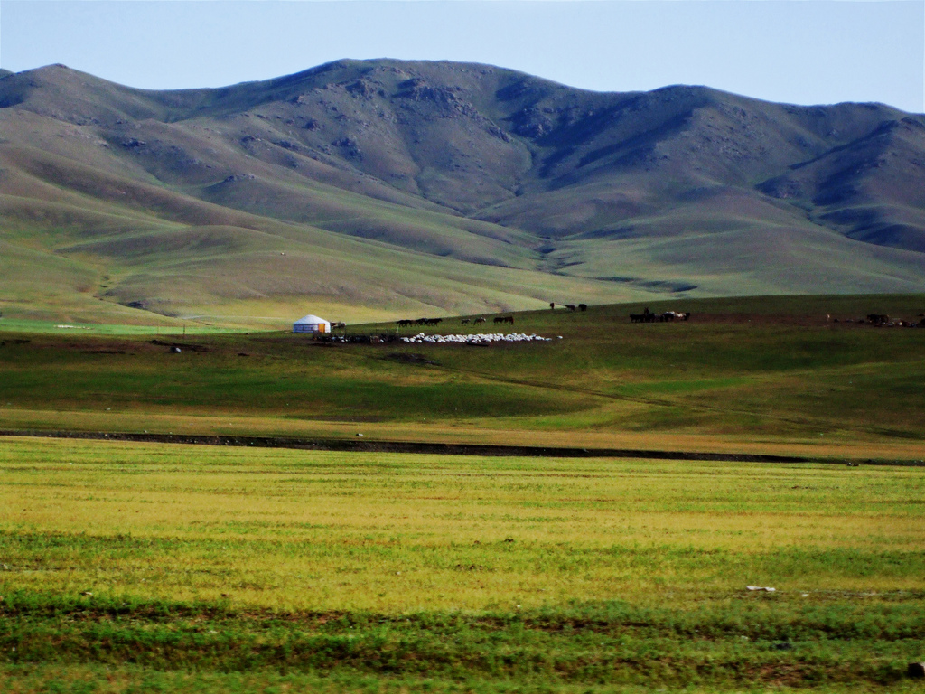 Монгол айлд зочлохуй-ардын цээрлэх ёсноос