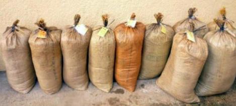 Дэрэн суманд малын тэжээл үйлдвэрлэхээр зэхэж байна