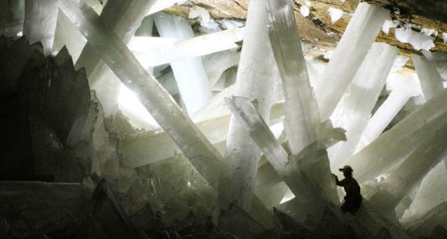 Мексикийн талстлаг хаднаас 50 мянган жилийн настай нян олджээ