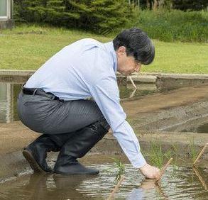 Японы эзэн хаан цагаан будаа тарих анхны ёслолдоо оролцжээ