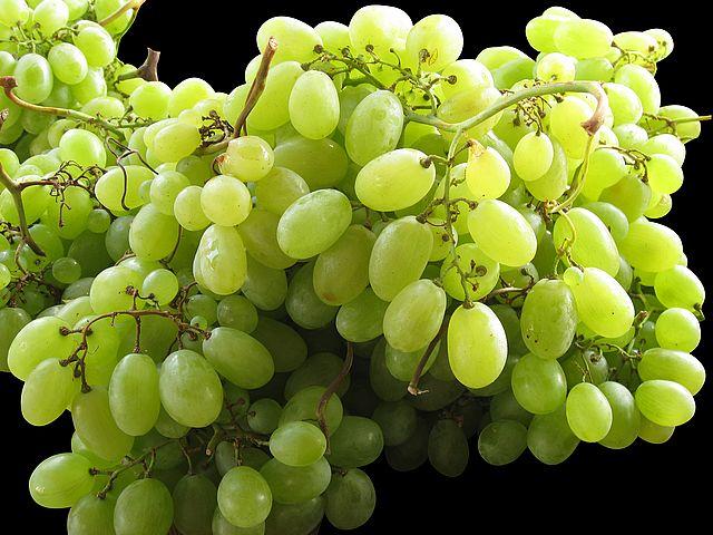 Жимс, жимсгэнэ хүний биед хэрхэн нөлөөлдөг вэ