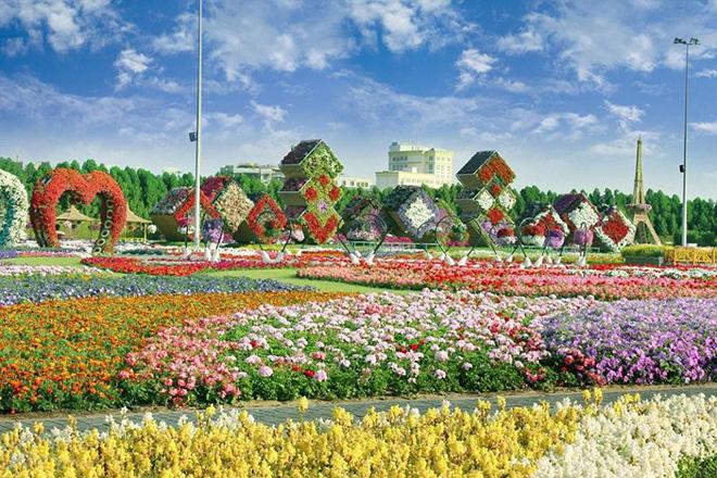 Дэлхийн хамгийн том цэцэрлэгт хүрээлэн 45 сая цэцэгтэй