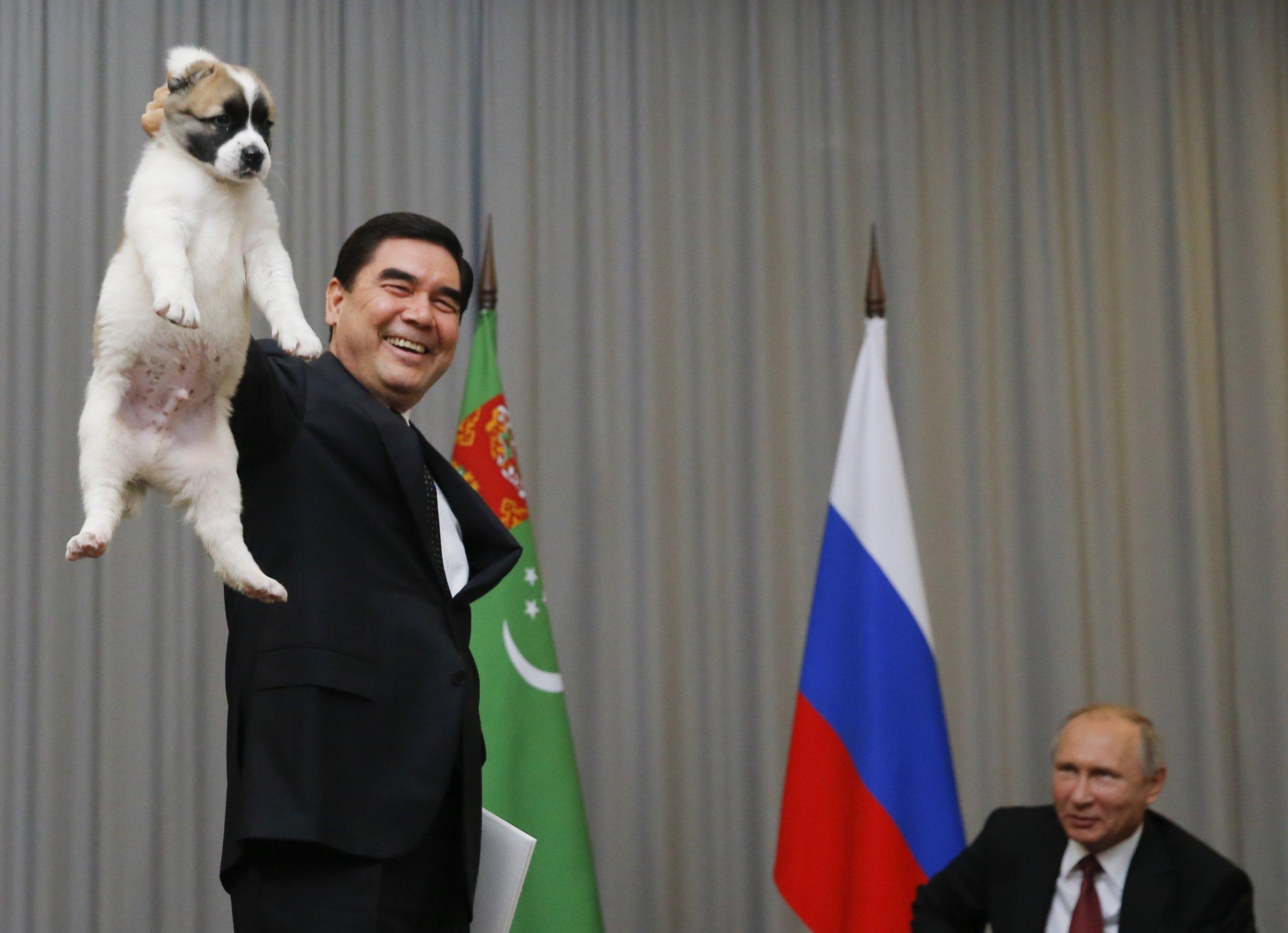 Путинд нохой бэлэглэв