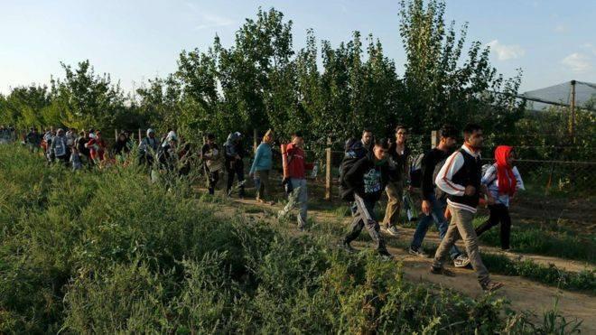 Унгарын хил хаагдсанаас Хорватыг зорьж эхэллээ