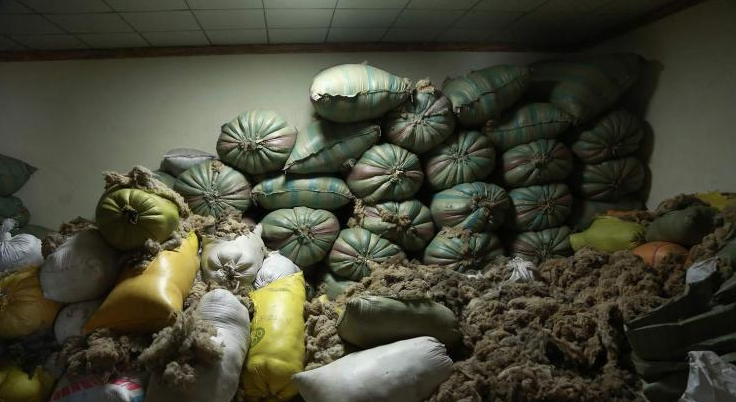 Ноолуур Дорнодод 20 мянга, Баян-Өлгийд 51 мянган төгрөгөөр худалдаалагдаж байна