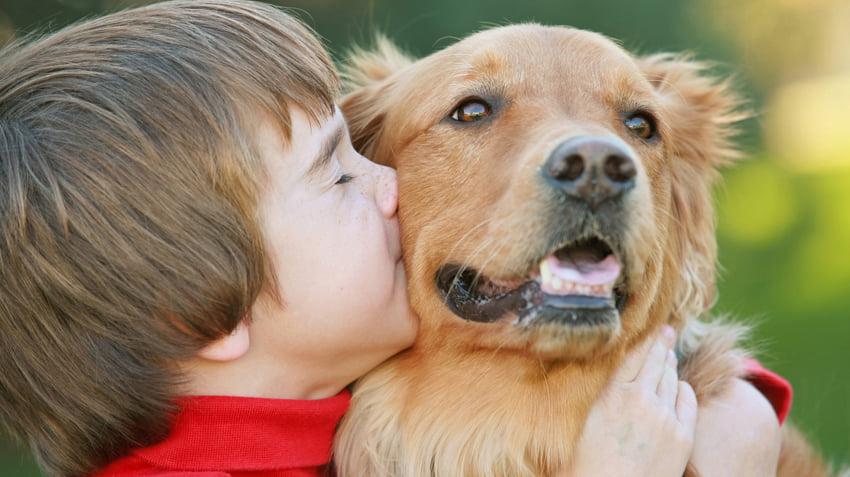 Нохой яагаад хүнээс бага насалдаг вэ гэдэг асуултанд 6 настай хүүгийн өгсөн хариултын гайхшруулам түүх