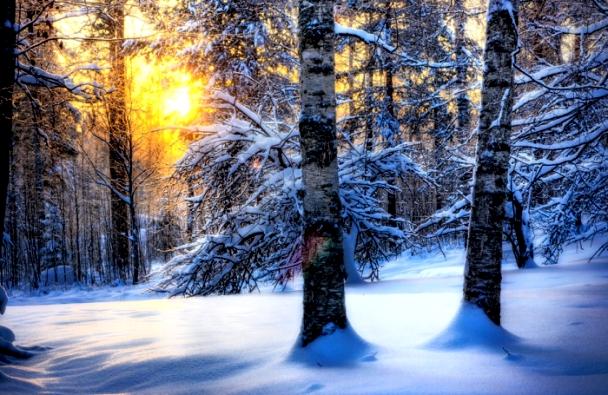 29-нд ихэнх нутгаар цас орж, цасан шуурга шуурч, хүйтний эрч чангархыг анхааруулж байна