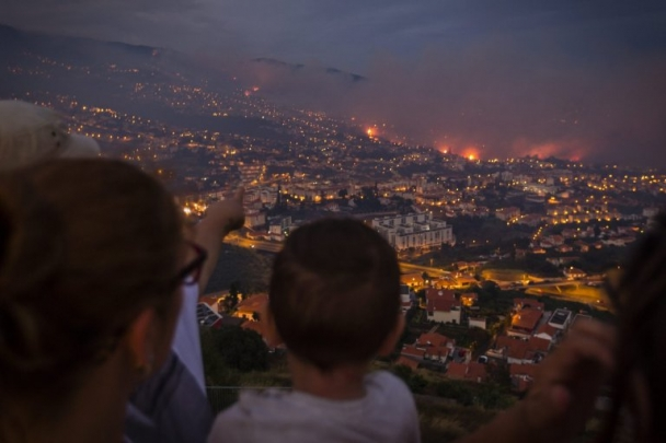 Португал улсад том хэмжээний түймэр гарчээ