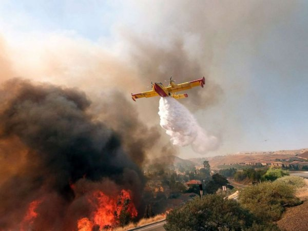 Түймрийн улмаас амиа алдсан хүмүүсийн тоо 50 хүрчээ