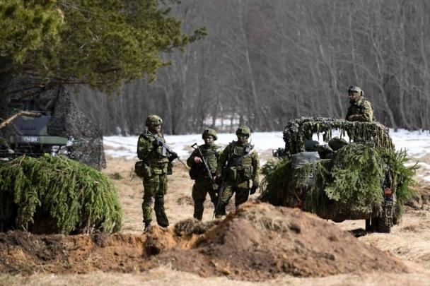 НАТО Эстонид цэргийн сургууль хийжээ