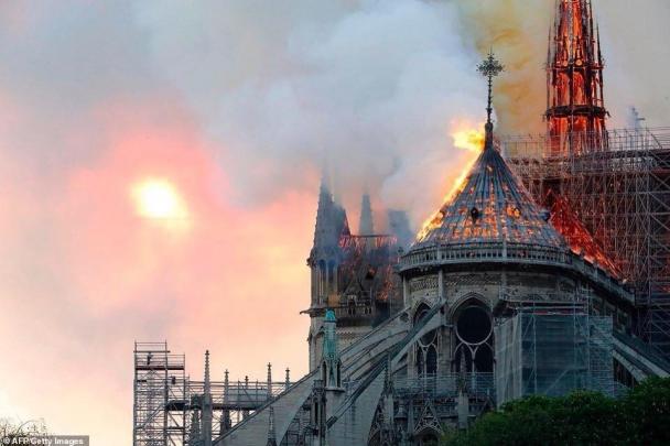 Парисын Дарь эхийн сүмийг сэргээхэд чулуужсан мод ашиглана