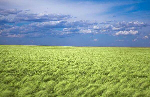 Монгол орны үзэсгэлэнт газрууд /фото зургуудаас/