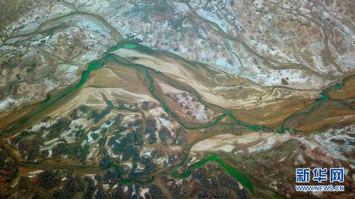 Шиньжяний Таримын голын нуга газрын гоц үзэмж
