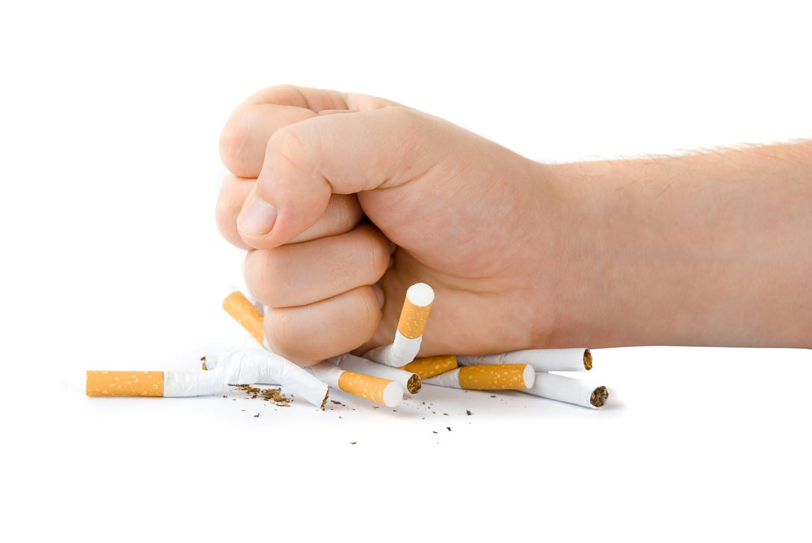 Б.Майцэцэг: Тамхины онцгой албан татварыг 50 хувиар нэмснээр 1,700-2,600 орчим хүнийг цаг бусаар эндэхээс сэргийлэх боломжтой