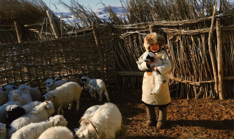 Малчин, гэрэл зурагчин С.Цэнгэлбаярын фото уран бүтээлүүд