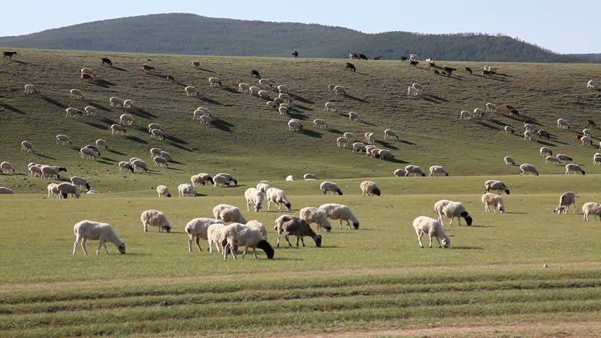 Монголчууд азтай, заяатай ард түмэн
