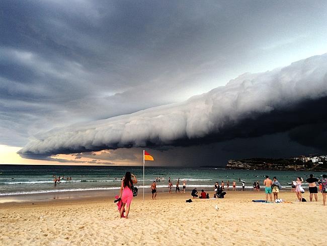Нийгмийн сүлжээг шуугиулсан Австралийн үүлэн цунами