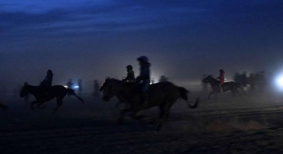 Морь уях нь хар тамхи шиг донтуулдаг бололтой
