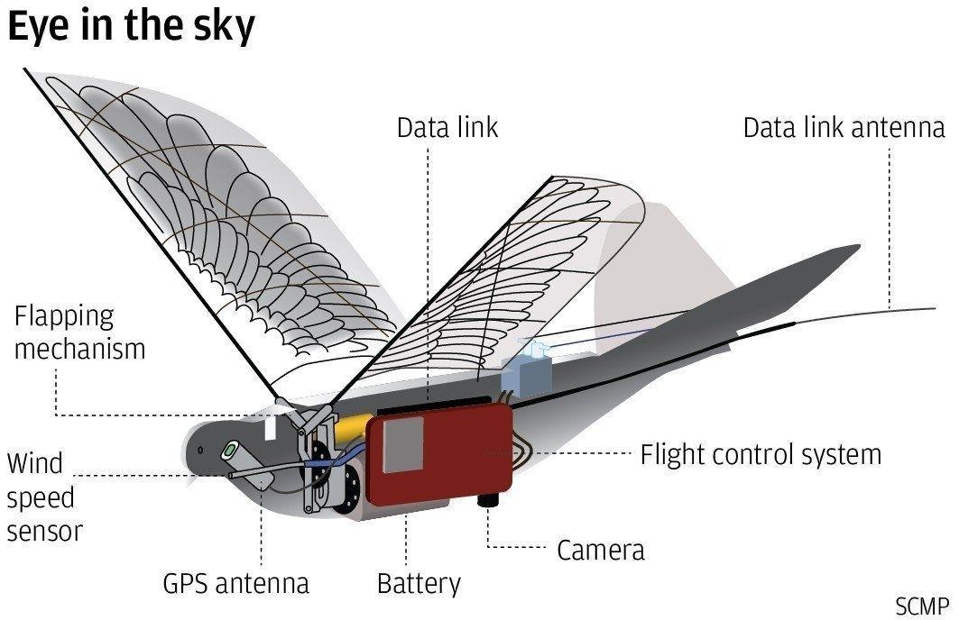 Хятадын эрх баригчид шувуутай адил харагддаг дроноор иргэдээ хянаад эхэлжээ