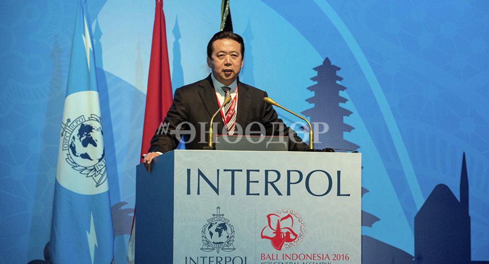 Мэн Хунвэйг баривчилсан нь Хятад улс авлигаа бүрэн дарахыг илтгэв