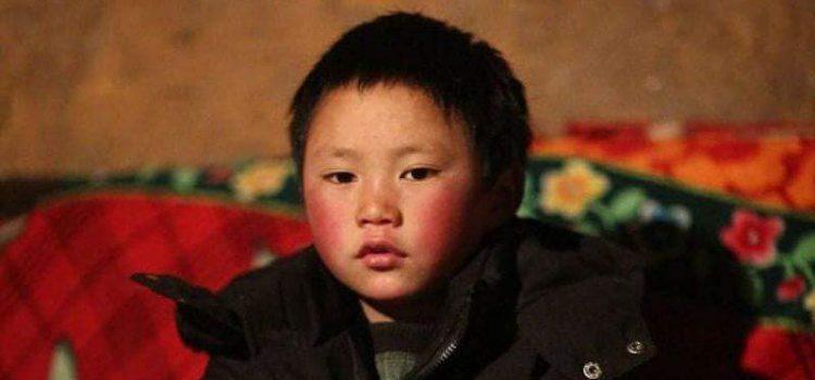 Траншейнаас олсон хүүхдээ өргөж авсан хос Монголчуудад хандлаа