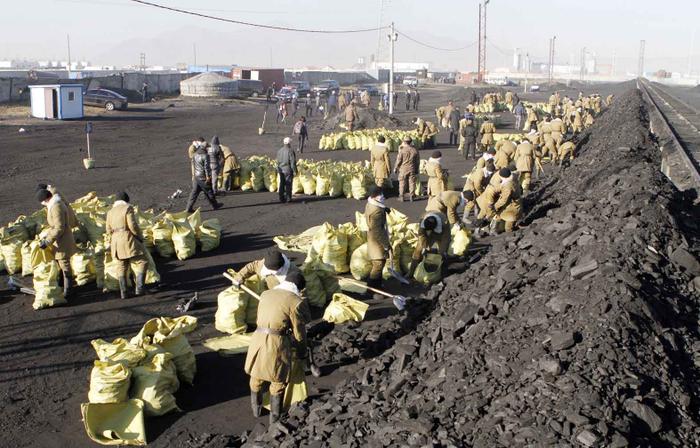 """""""Нүүрс"""" хөтөлбөр улс төрчдийн шоглоом болж, иргэд үнэтэй нүүрс худалдаж авсаар..."""