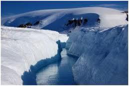 Image result for Арктикийн цөл