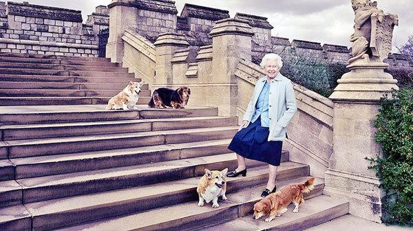 Английн хатан хаан ямар эрх, ямбатай вэ?
