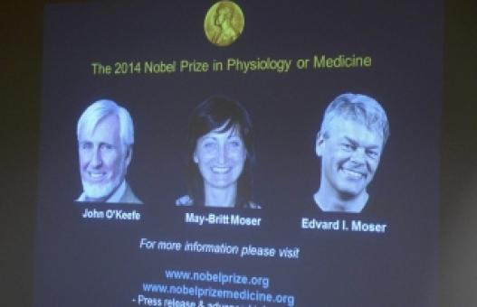"""""""Тархин дахь байршил тогтоогч"""" Нобелийн шагнал хүртэнэ"""