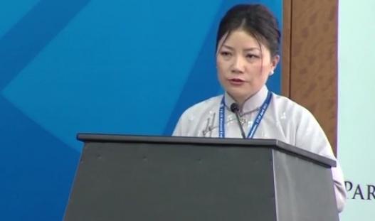 УИХ-ын гишүүн Г.Уянгын Англи хэл дээр тавьсан илтгэл /видео/