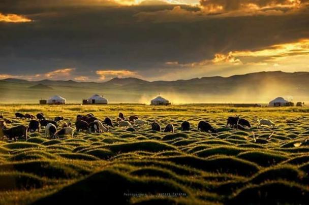 Монгол ёсонд багадаа 300 гаруй цээрлэх жаяг байдгаас 100 цээрлэх ёс