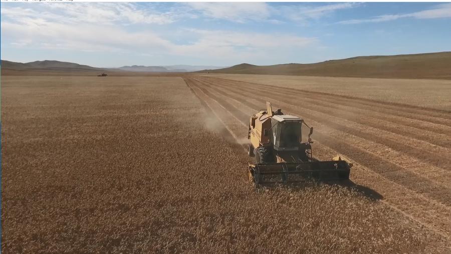 Ургац хураах цагаар стратегийн хүнсийг экспортлохгүй, импортлохгүй