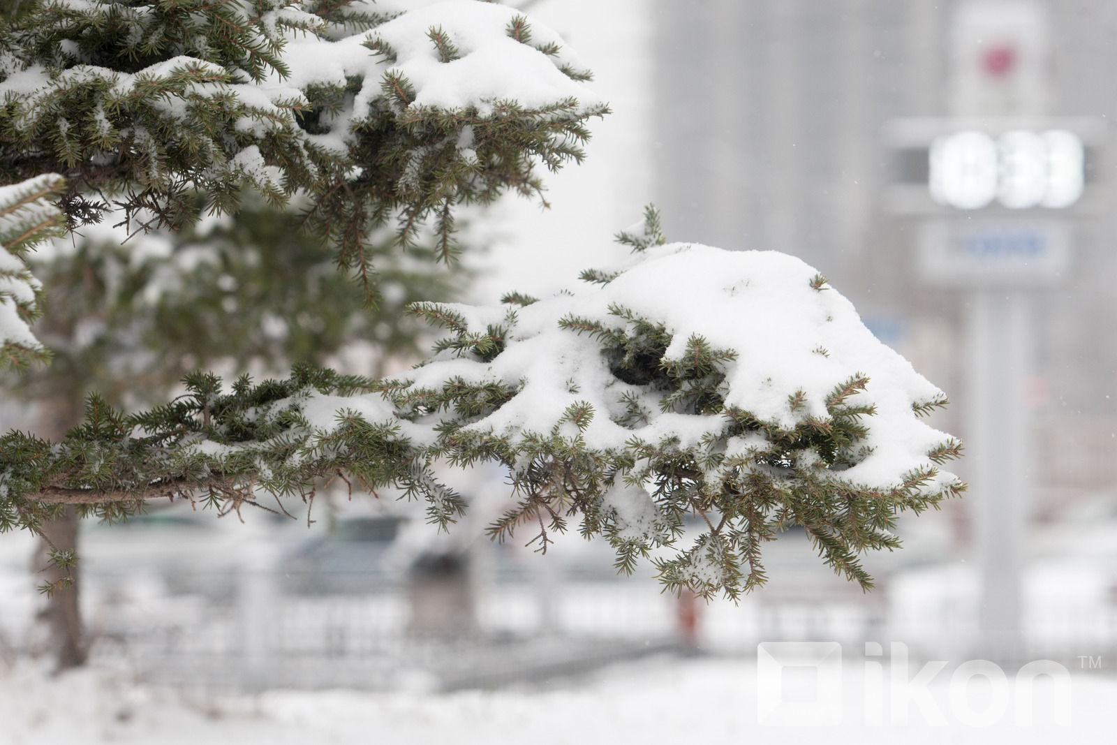 Улаанбаатарт өдөртөө 7 хэм хүйтэн