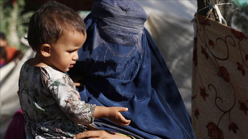 Шинэ Зеландаас Афганистанд хүмүүнлэгийн тусламж үзүүлжээ