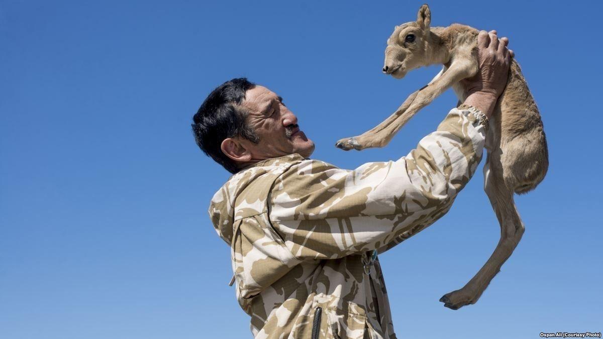 Казахстанд хулгайн анчид байгаль хамгаалагчийн амийг хөнөөсөн дуулиант хэргийг шалгаж байна
