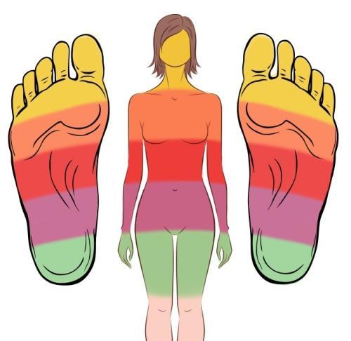 Хөлийн уланд байрлах 21 цэгт массаж хийснээр эрүүл мэнд сайжирна