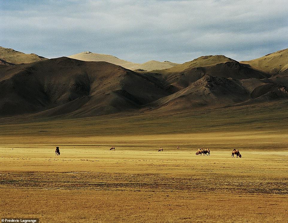 Английн гэрэл зурагчны дуранд Монгол улс