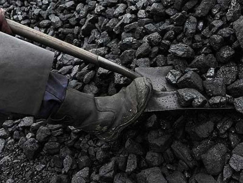 Түүхий нүүрс тээвэрлэсэн болон хэрэглэсэн тохиолдолд 300 мянгаас гурван сая хүртэлх төгрөгөөр торгоно
