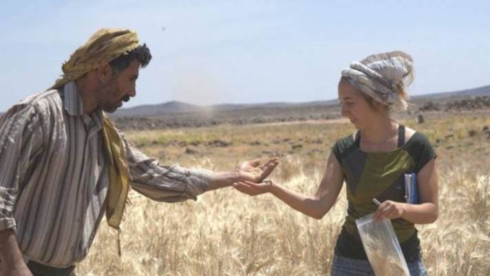 Талх барих хамгийн эртний жорыг олжээ