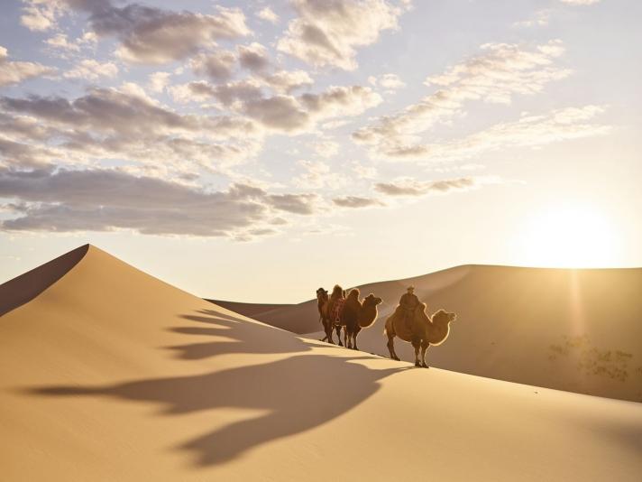 Монгол-адал явдал сонирхогчдын мөрөөдөл