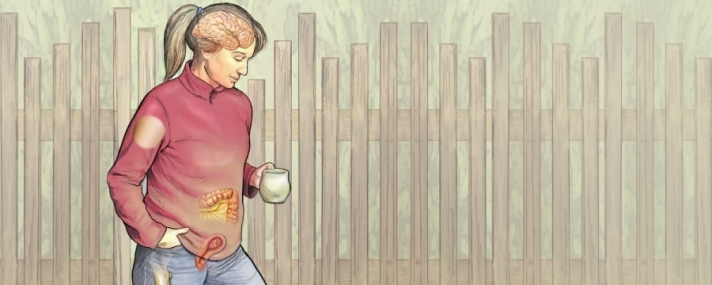 The Scientist: Хүний биеийн анатомийн 6 шинэ нээлт
