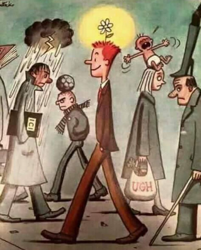 Тэнэг хүн аз жаргалтай...