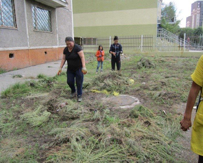 21.3 тонн хөл газрын ургамал, хог хаягдлыг цэвэрлэв