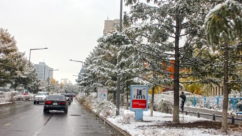 Улаанбаатарт өдөртөө нойтон цас орно