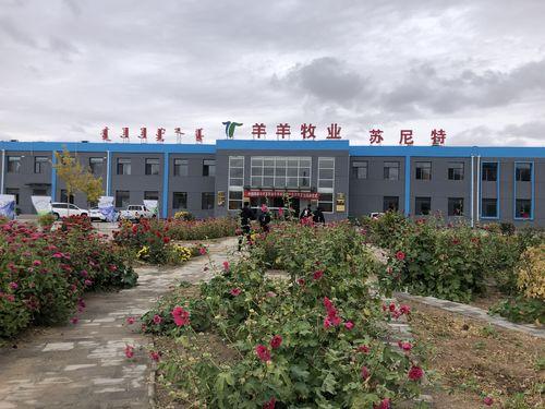 Хятад- Монголын хамтарсан сурвалжилгын баг:  Ядуурлыг бууруулах үйлсэд эрчимтэй ажиллаж буй Ян ян компани